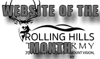 Website of the Month - Information Systems Division Inc